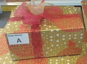 Party Box Winter (Your choice will be wrapped in this box)